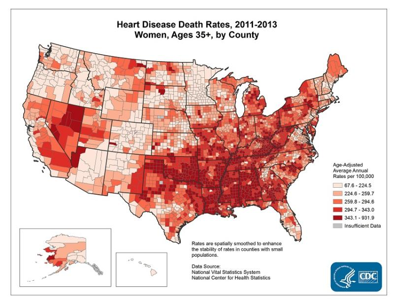 Just within the United States, about one in every four female deaths are due to heart diseases – the leading cause of death in women in 2013. Photo credit: Centres for Disease Control and Prevention (CDC)