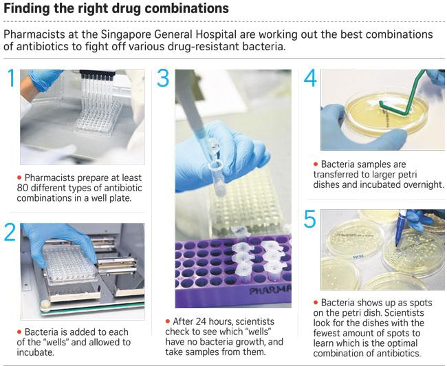 An explanation of the method used in finding the right drug combinations. Photo credit: SGH
